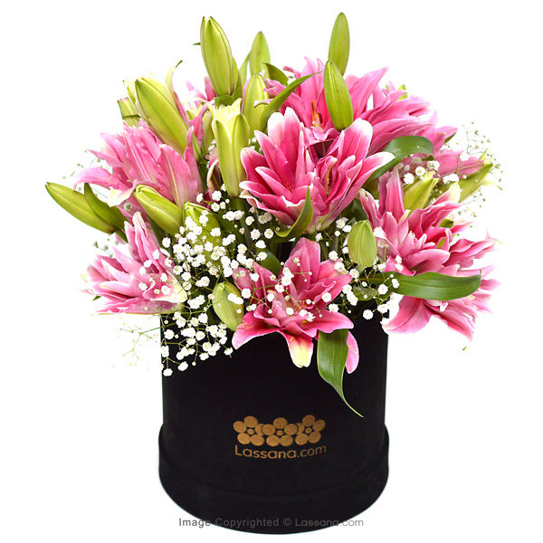 THE MUSE - Lovely Lilies - in Sri Lanka
